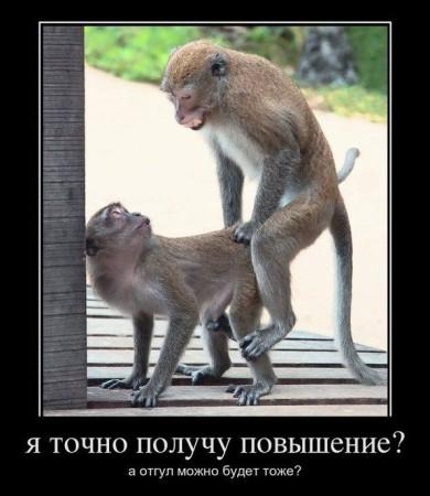 6_3DkAiySh1bhMyMr