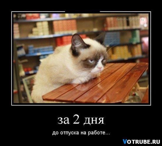 1429206726_1429150242_19