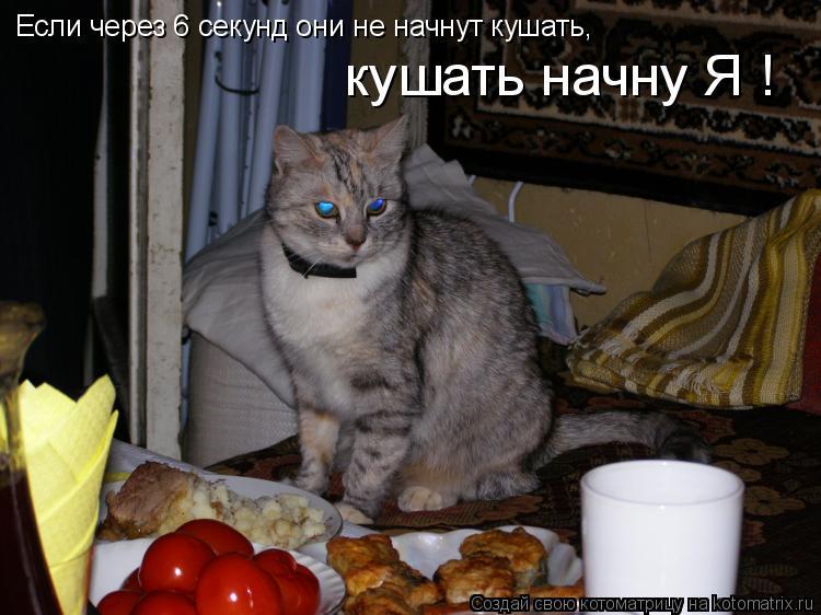 humor_4095_20091028_1806914586