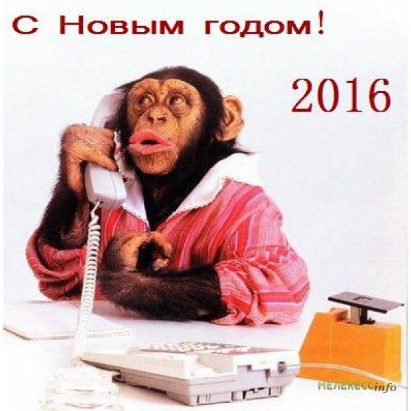 novogodnie_korporativy_12083