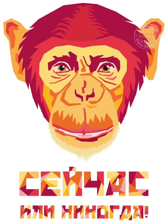 red-monkey-2016