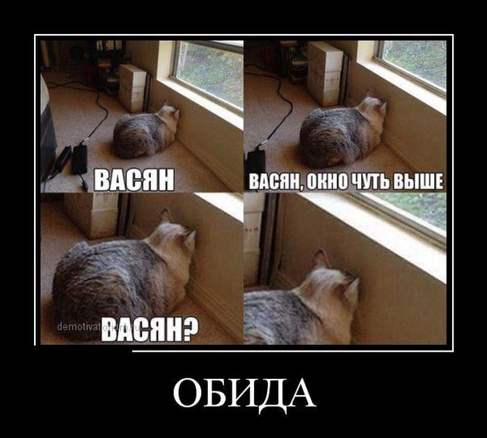 1428856464_hohotok.net_10demotivatory_25
