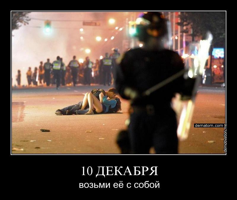 527575-10_dekabria_vozimi_ee_s_soboi