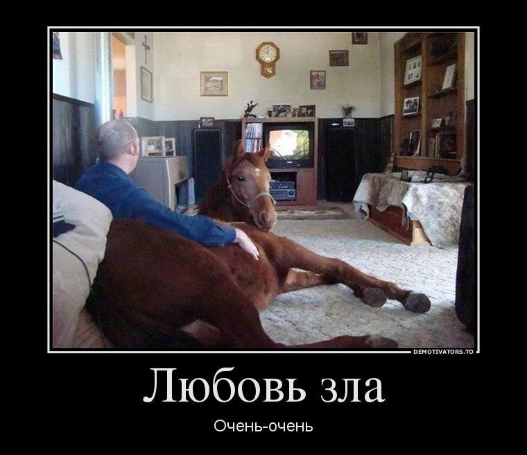 53178594_lyubov-zla