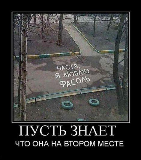 Stimka.ru_1297418156_36213
