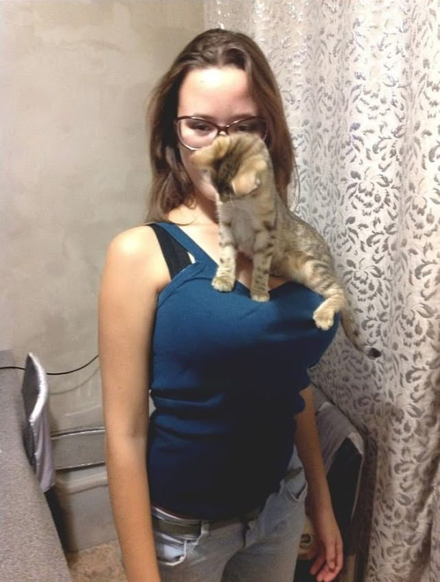 cat_boobs_02