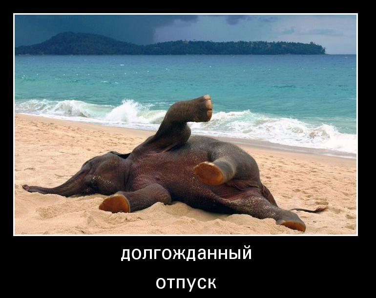 все я в отпуск картинка салфеточного лебедя