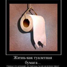Смешные картинки про жизнь. (11 фото)
