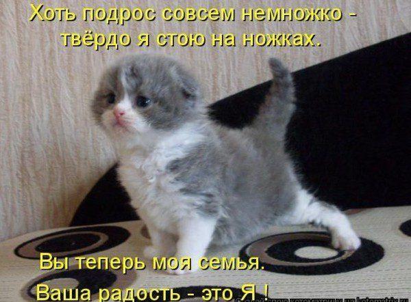DY8OkCcPT_U-e1358726262892