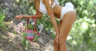 Девушки в костюмах заек. (12 фото)