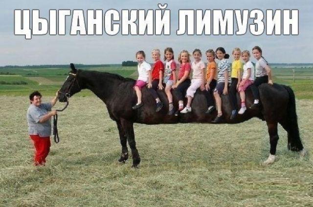 цыгане-лимузин-песочница-614270