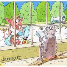 Анекдоты про зоопарк