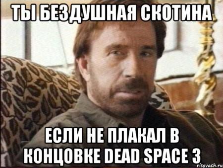 chak-norris_10842112_orig_