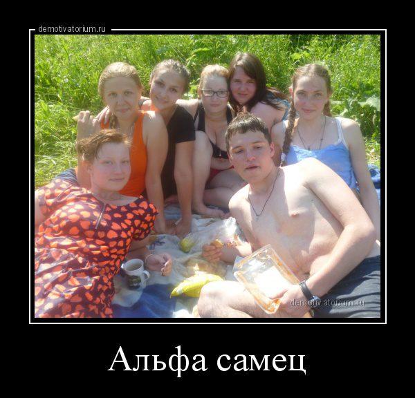 demotivatorium_ru_alfa_samec_93824