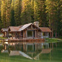 Дома в лесу. (13 фото)