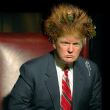 Приколы над Дональдом Трампом (15 фото)