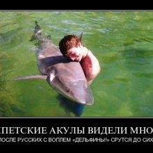 Приколы про русских туристов. (11 фото)