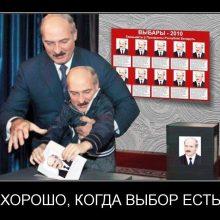 Приколы про выборы. (11 фото)