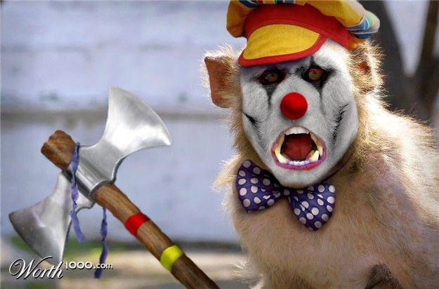 1239222690_clown_animals_12