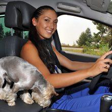 Женщины за рулем (46 фото)