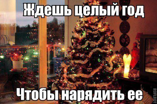 Ждешь целый год чтобы нарядить елку