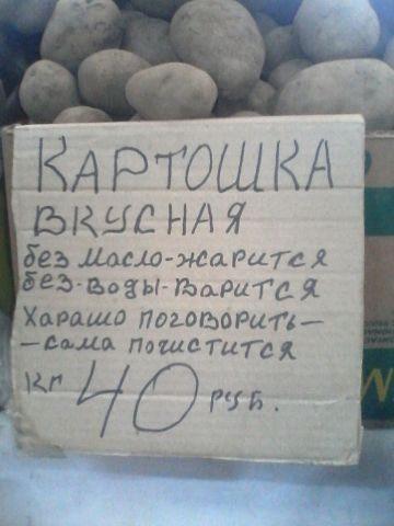zhibty9n_8u