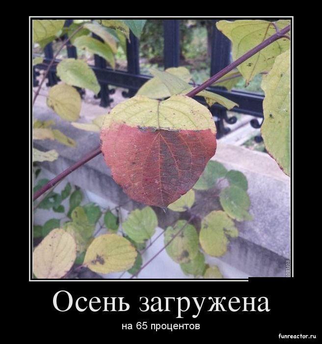 Осень загружена...