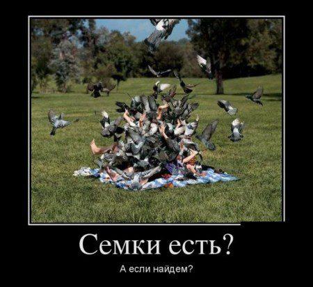 1471115652_smeshnye-demotivatory-14_podstolom-su