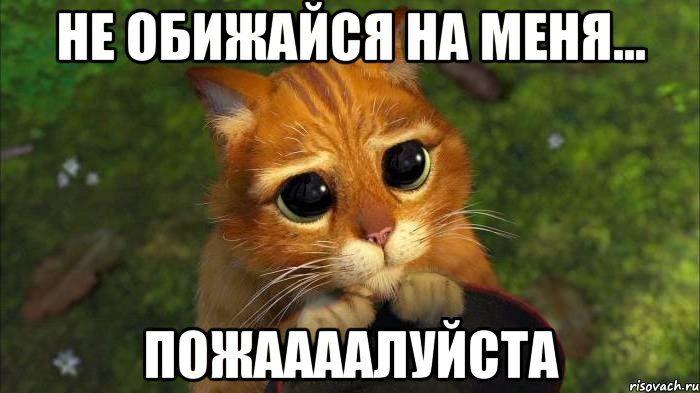 nu-pozhaaalujsta_41369344_orig_