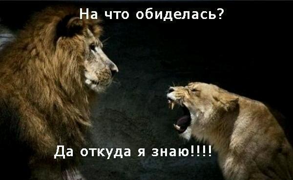 _yapfiles-ru