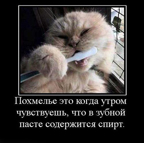 0_e2553_517bc918_l