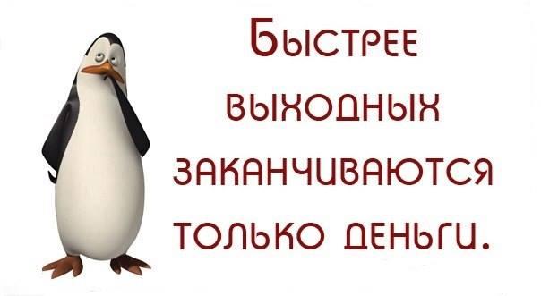 101382_495fffcc_886150712