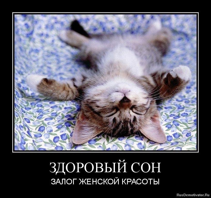 Картинки про сон смешные