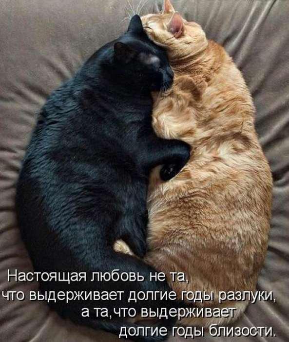 1316104431_d82dcuylyq