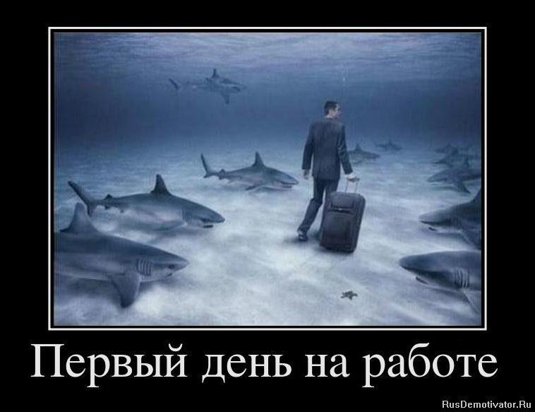 1327870771_884612_pervyij-den-na-rabote