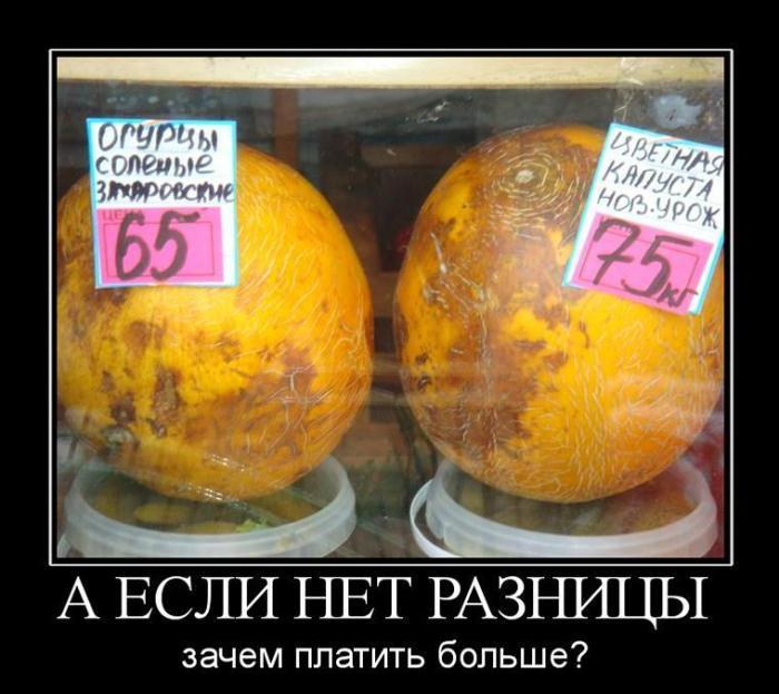 demotivators_ru_856783