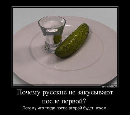1363612361_7018_pochemu-russkie-ne-zakusyivayut-posle-pervoj-_demotivators_ru
