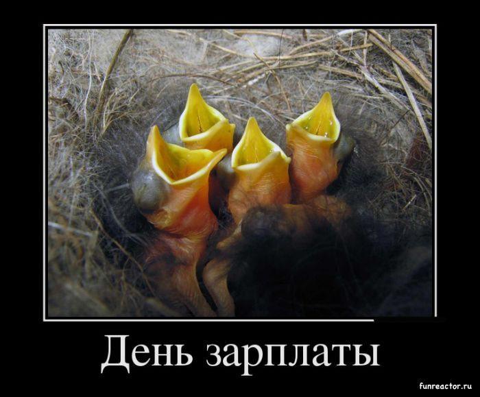 1370857316_1370847081_demotivatory_09