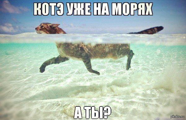 1371148762_173231571