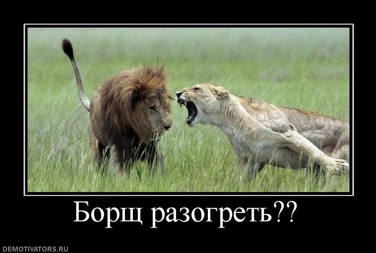 demotivatory-pro-devushek-lvy-34255