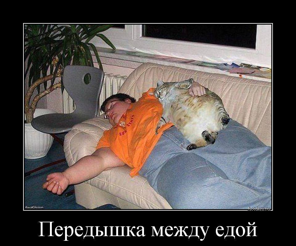 hotdem_ru_638891249340563135510