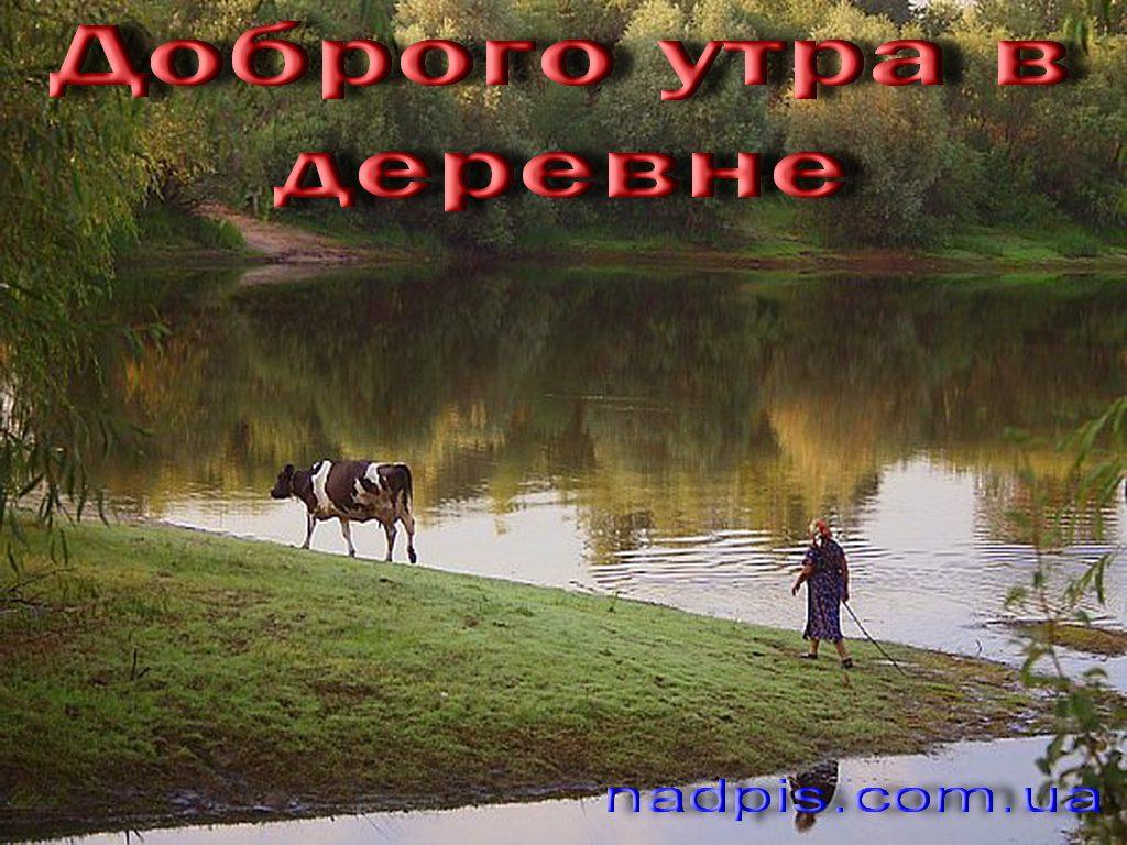 httpnadpis-com_-uadobrogo-utra-v-derevne