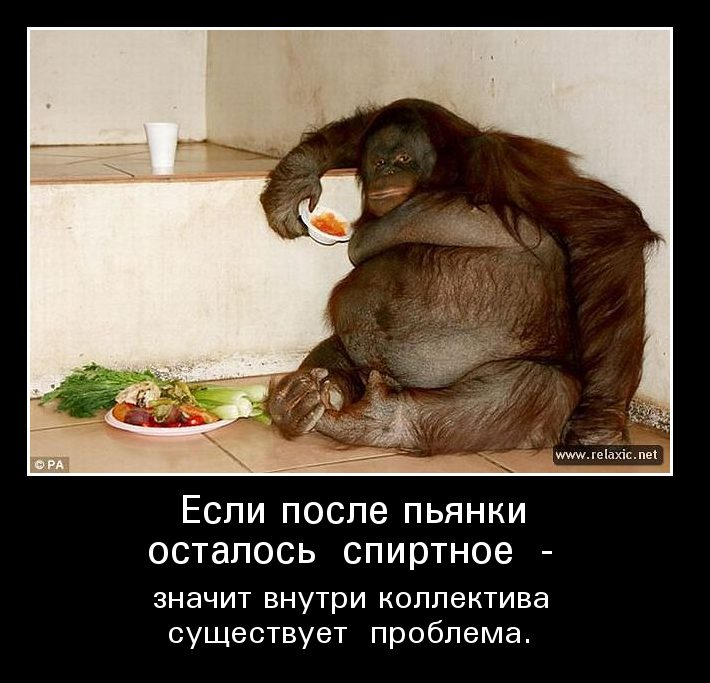 images_50