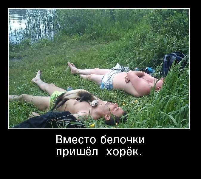images_840