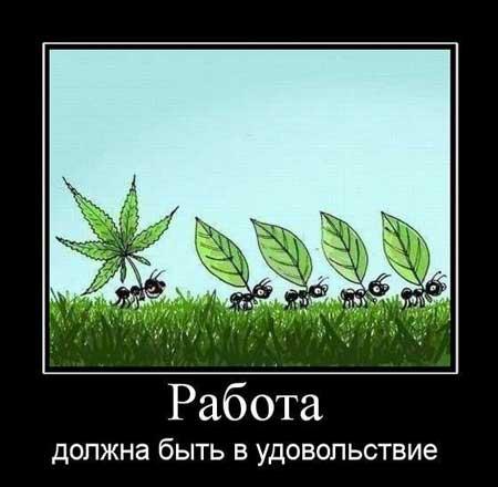kartinki_pro_rabotu_07