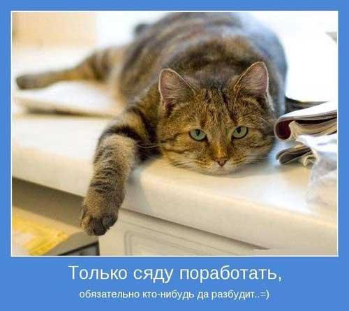 kartinki_pro_rabotu_14