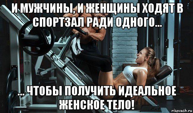 sportzal_117794209_orig_