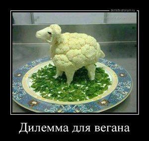 tmb_demotivatorium_ru_dilemma_dlja_vegana_122016
