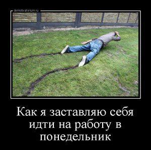 tmb_demotivatorium_ru_kak_ja_zastavljau_sebja_idti_na_rabotu_v_ponedelnik_96986