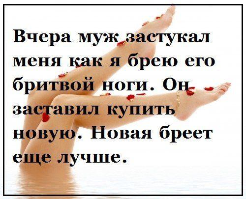 106638_7d96bb09_2025613649